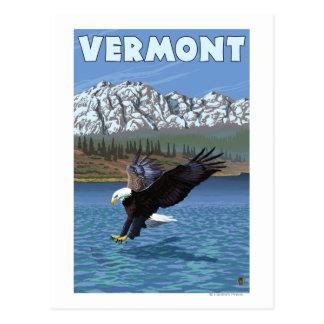 VermontEagle Fishing Postcard
