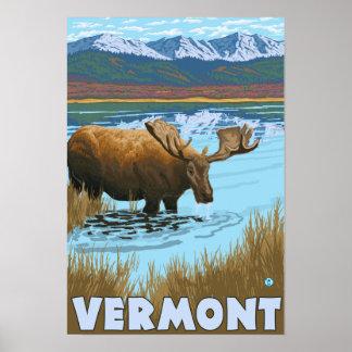 VermontMoose que bebe en el lago Póster