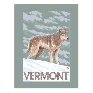 VermontWolf Scene Postcard