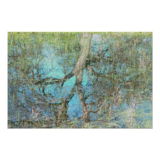 Vernal Reflections Poster