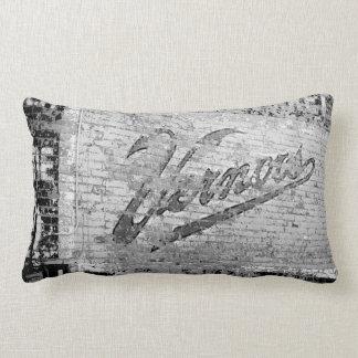 Vernor's Brick Wall Ann Arbor Michigan 1999 Throw Pillow