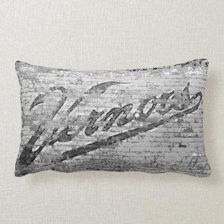 Vernor's Brick Wall Ann Arbor Michigan Lumbar Pillow