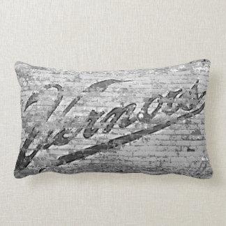 Vernor's Brick Wall Ann Arbor Michigan Pillow