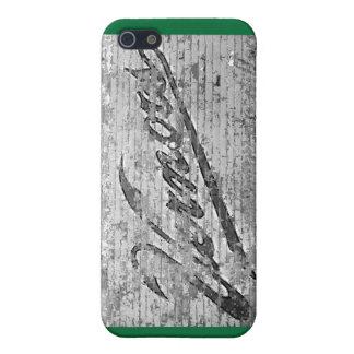 Vernor's Wall Ann Arbor Michigan iPhone 5 Case
