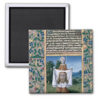 Veronica del St. Imán Para Frigorifico