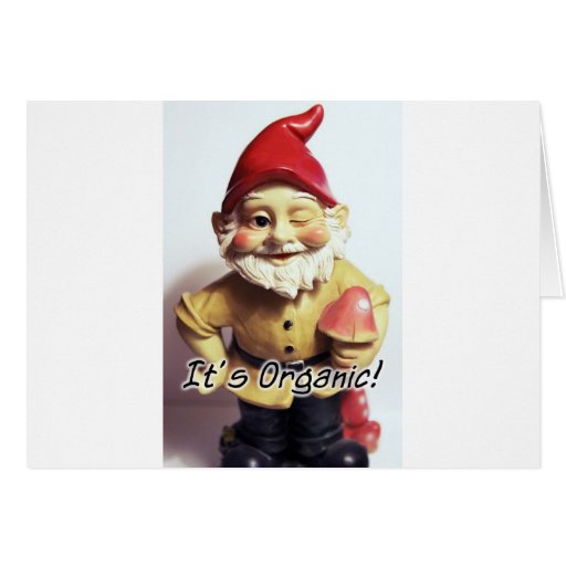 Veronica the Gnome Greeting Card
