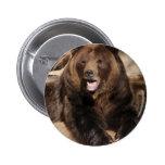 Verraco del oso grizzly pin