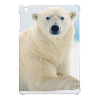 Verraco grande adulto del oso polar en el hielo