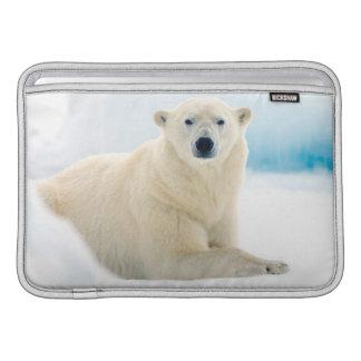 Verraco grande adulto del oso polar en el hielo funda  MacBook
