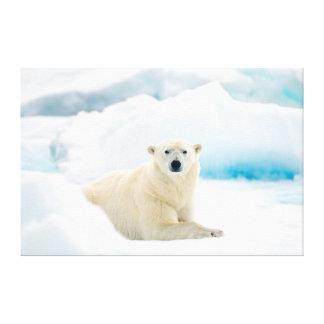 Verraco grande adulto del oso polar en el hielo lienzo envuelto para galerias