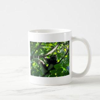 Verreaux Sifaka male in tree Coffee Mug