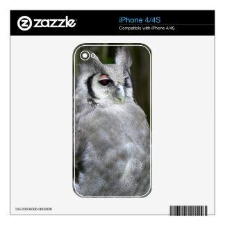 Verreaux's Eagle-Owl (Bubo Lacteus), Gauteng Decals For iPhone 4