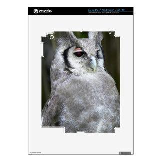 Verreaux's Eagle-Owl (Bubo Lacteus), Gauteng Skins For iPad 3