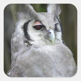 Verreaux's Eagle-Owl (Bubo Lacteus), Gauteng Square Sticker