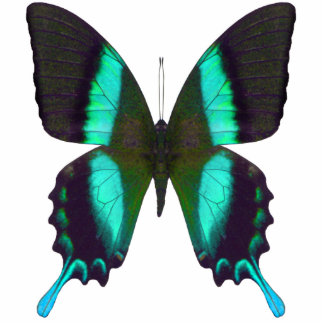 Versatile Majestic Green Swallowtail Butterfly Statuette