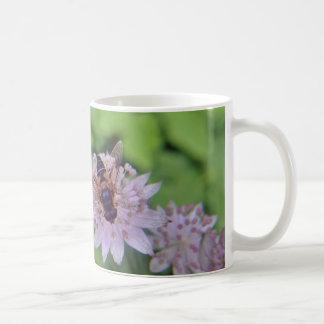 Versión 1 de la flor del abejón taza