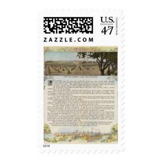 Verso Alameda County Postage