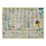 Verso American Airlines system map Poster