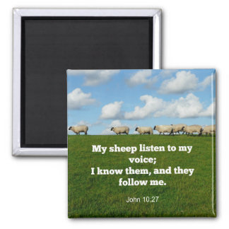Verso de la biblia, 10:27 de Juan, mi oveja… Imán Cuadrado