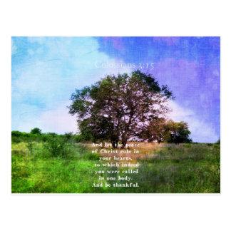 Verso inspirado de la biblia del 3:15 de postales