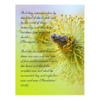 Versos de la biblia, tiempo de primavera tarjetas postales
