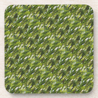 Verte Coaster