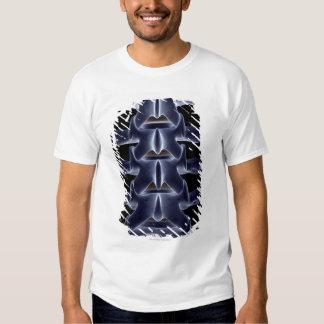 Vértebra lumbar 2 camisas