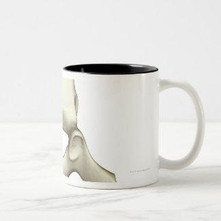 Vertebrae Two-Tone Coffee Mug