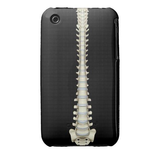 Vertebral Column 2 iPhone 3 Cover