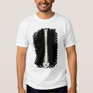 Vertebral Column 2 Shirt