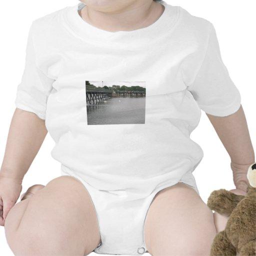 Vertedero con los cisnes, el río Támesis, Trajes De Bebé
