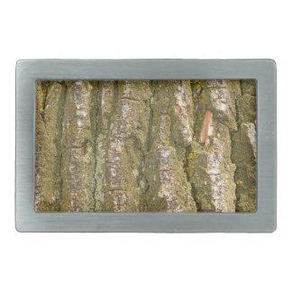 Vertical de la textura de la corteza de árbol hebillas cinturón rectangulares