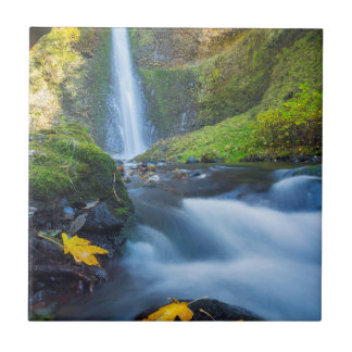 Vertical panorama view of Tunnel Falls Ceramic Tile