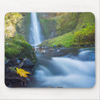 Vertical panorama view of Tunnel Falls Mouse Pad