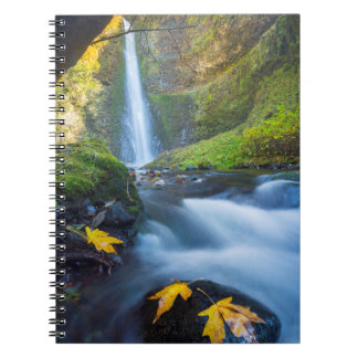 Vertical panorama view of Tunnel Falls Notebook