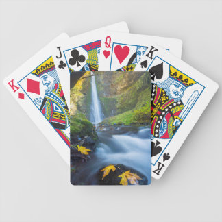 Vertical panorama view of Tunnel Falls Bicycle Playing Cards