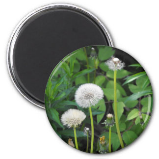 Vertical templates 2 inch round magnet