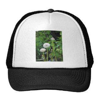 Vertical templates trucker hat