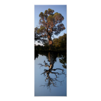 Vertical Tree Landscape Poster