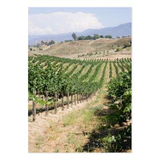 vertical vineyard business card