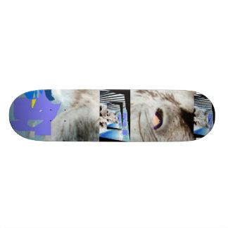 Vertigo Distance Skate Board