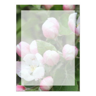 Very beautiful spring, summer pink apple flowers. 5.5x7.5 paper invitation card