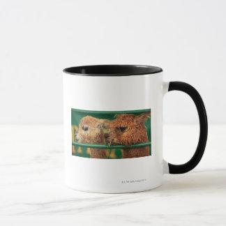 very cute lamas both looking at something off mug