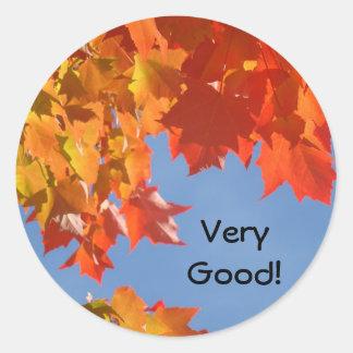 Very Good stickers Excellent Good Job School