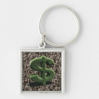 very grassy Dollar symbol Keychain
