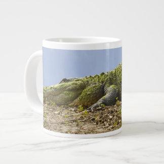 Very Large Alligator Specialty Mug