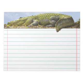 Very Large Gator with Tail Out of Bounds Note Pad