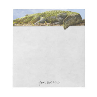 Very Large Gator with Tail Out of Bounds Notepad