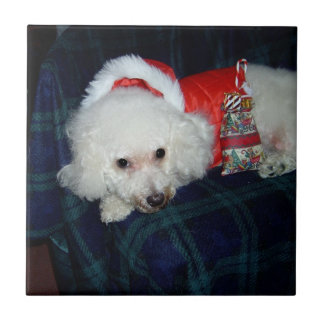 """Very Merry Bichon"" Christmas Tile"