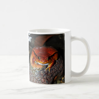 Very nice tomato frog. Frog with unusual color. Coffee Mug